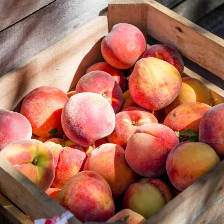 桃ネイルのやり方が気になる!夏が旬のデザインや桃ケーキで瑞々しさを楽しもう♡