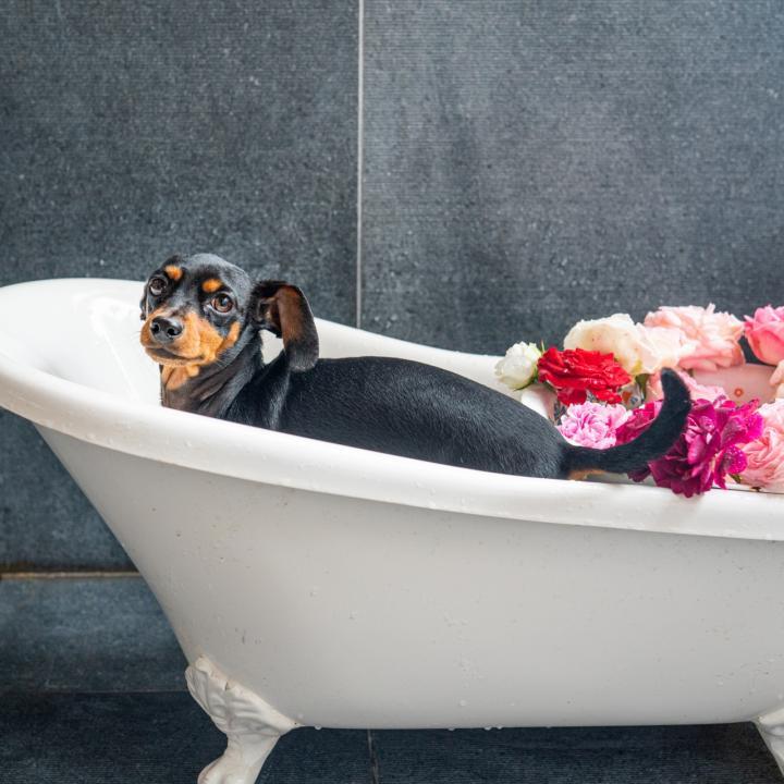 マニキュアはお風呂上がりに塗っていいの?リラックスしてきれいになるには入浴方法に注目