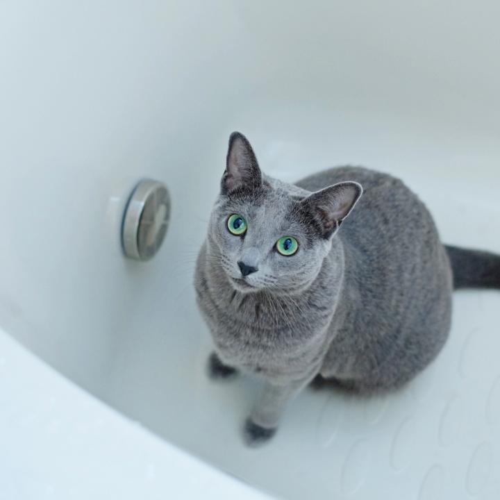 ジェルネイルの当日はお風呂に入っていいの?お風呂が美容効果抜群な理由